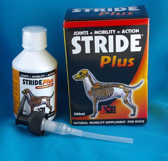 6 лучших хондропротекторов для собак: для собак крупных пород, лекарства для суставов