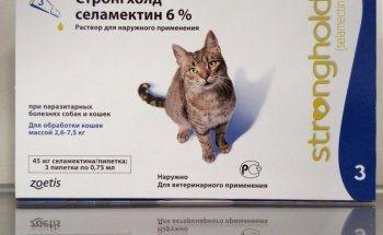 Как капать стронгхолд кошке