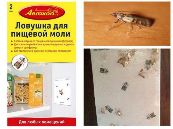 AEROXON ловушки от моли