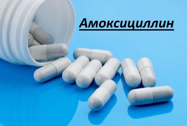 Амоксициллин для собак полное описание препарата, дозировка, противопоказания
