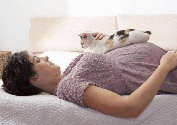 Беременная женщина с кошкой на животе