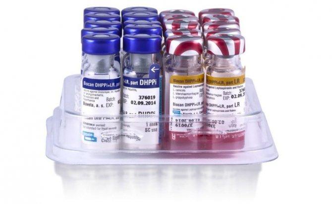 Биокан DHPPI LR