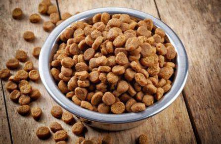 брит премиум корм для собак отзывы