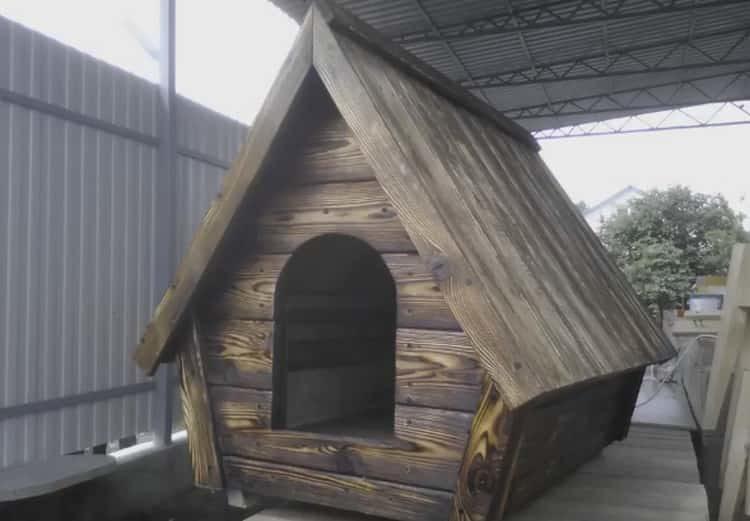 Будка для немецкой овчарки, сделанная своими руками, получится не только удобной но и уютной для собаки.