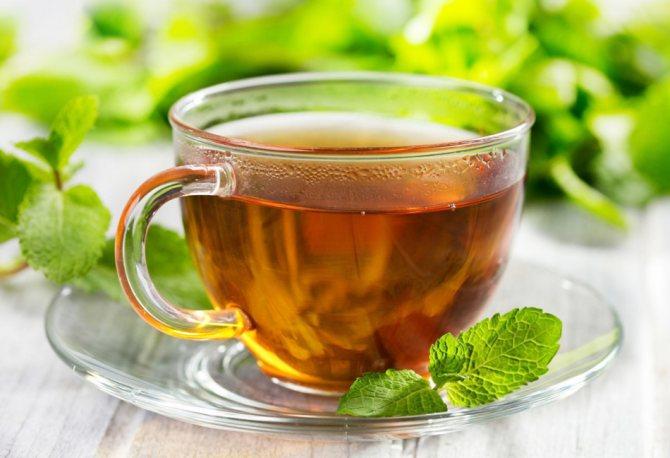 Чай из котовника с мятой