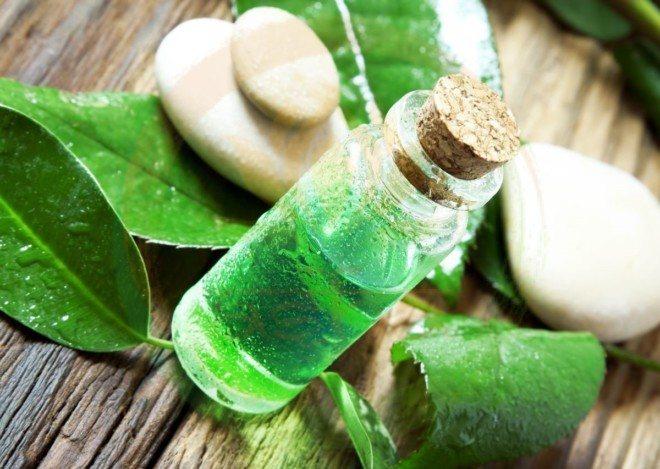 Чайное дерево - масло