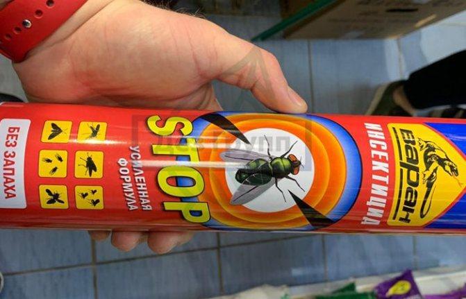 Чего боятся осы - огонь, вода, инсектициды