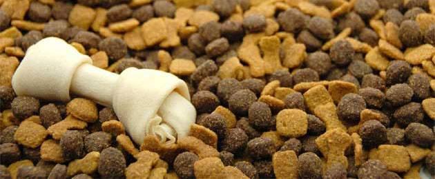 Чем кормить аляскинского маламута
