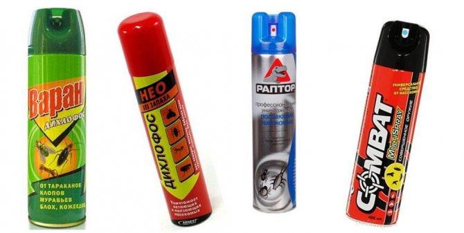 Дихлофос Нео без запаха инструкция по применению, эффективность, отзывы покупателей