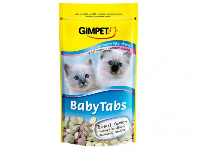Для котят есть свои лакомства, нельзя кормить их взрослым угощением, esky.ru