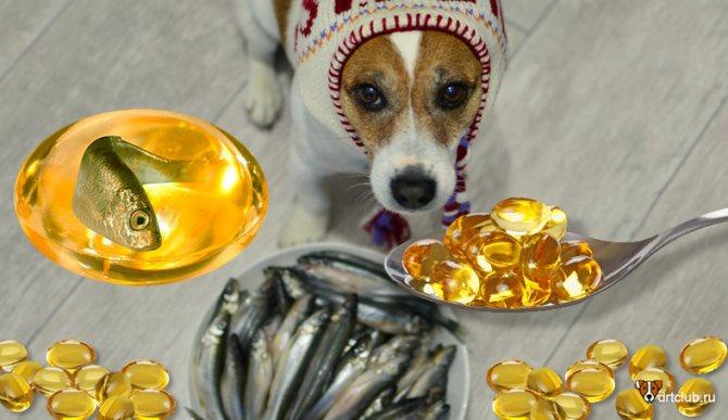 Добавки для собак