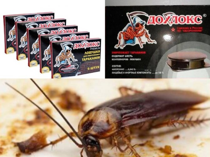 дохлокс гель от тараканов советы покупателям