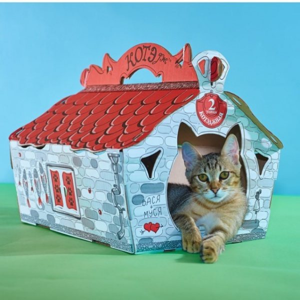 Домик для кошки из картона фото