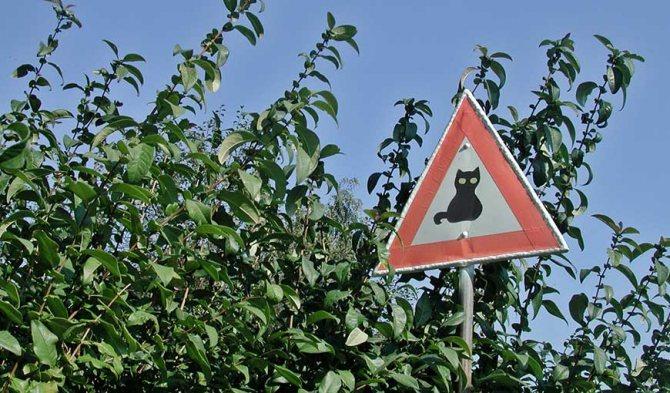 Дорожный знак в Германии