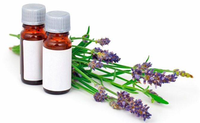 Эфирное масло против вшей и гнид в домашних условиях - рецепты и советы по применению