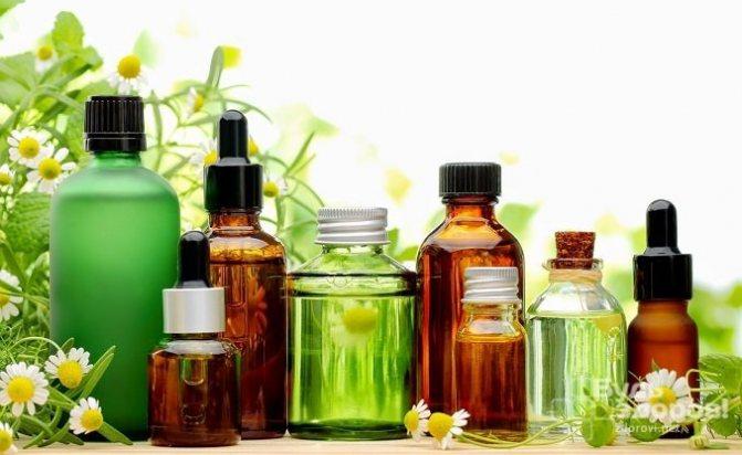 Эфирные масла эффективно применяются для борьбы с блохами в квартире
