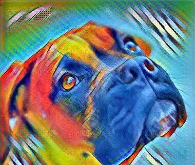 Эпулис у собак