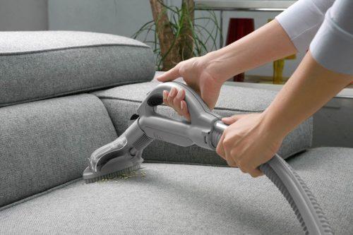 Если кот метит диван