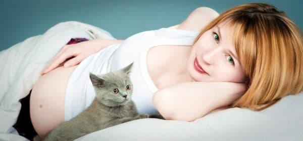 Если котенок снится беременной женщине