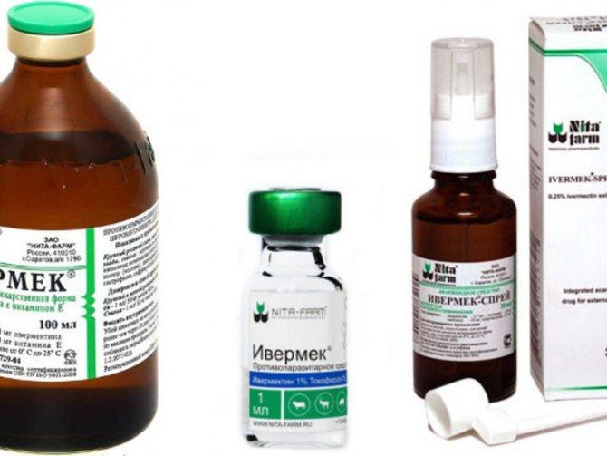 Форма выпуска препарата Ивермек