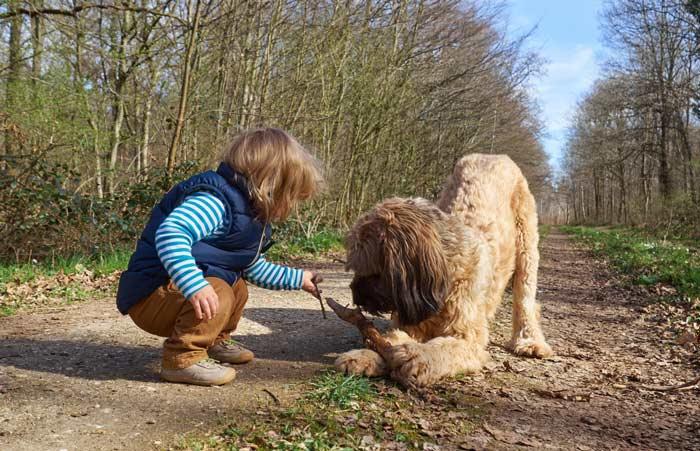 Фото: Собака Бриар и ребенок