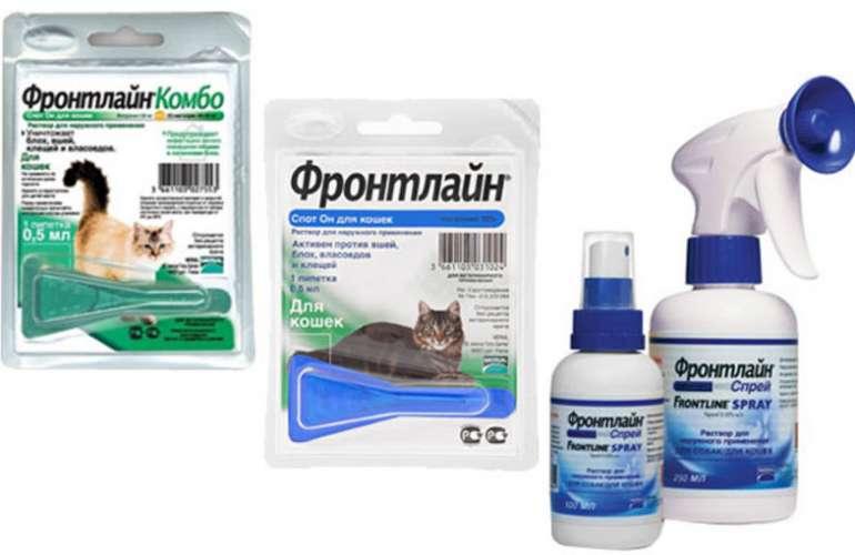 Фронтлайн для котов и кошек