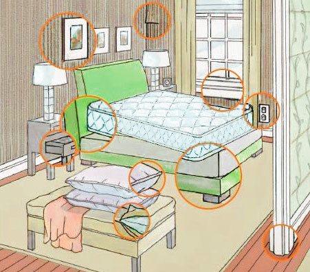 Где прячутся клопы в квартире?