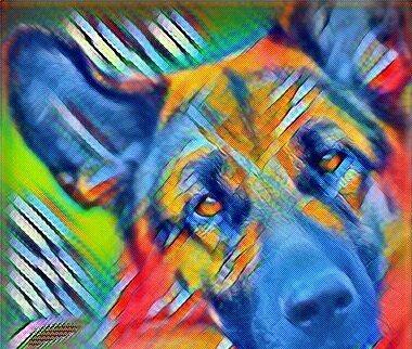 Гепатопатии собак