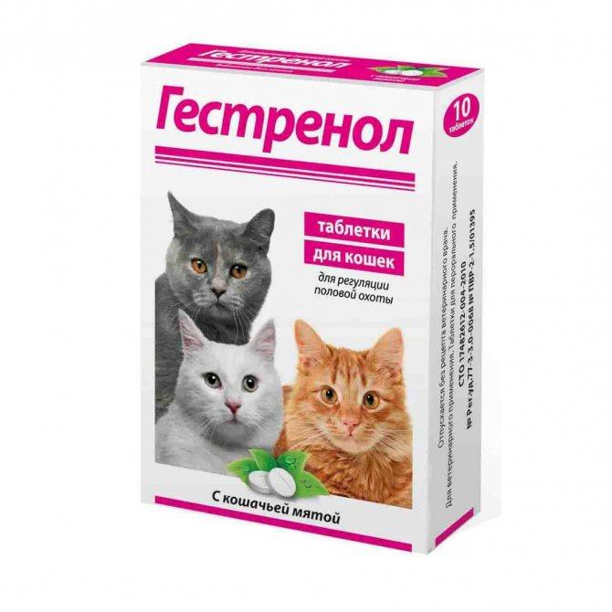 Гестренол для кошек — инструкция по применению каплей и таблеток