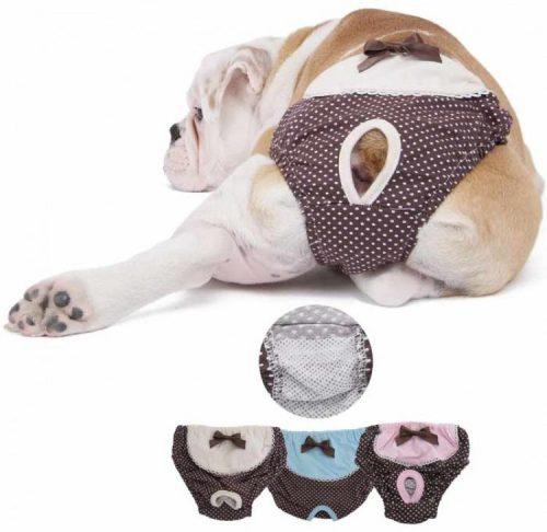 Гигиенические трусики для собаки во время течки