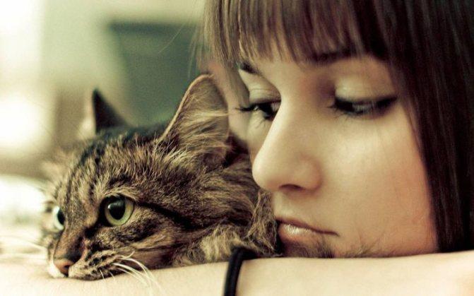 Грустная девушка с кошкой