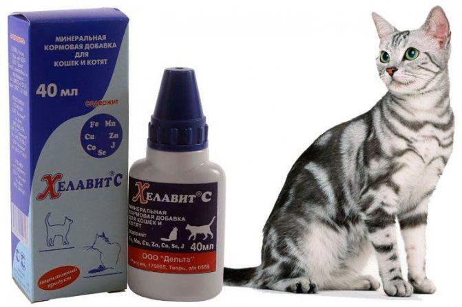 Хелавит для кошек
