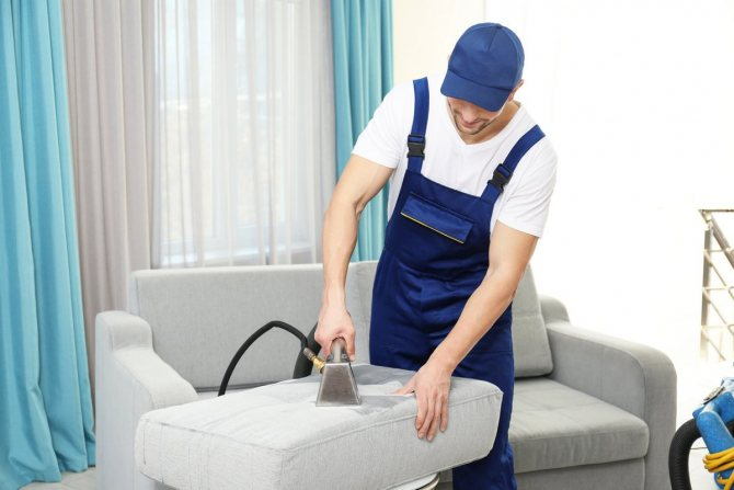 Химчистка дивана и средства от кошачьей мочи