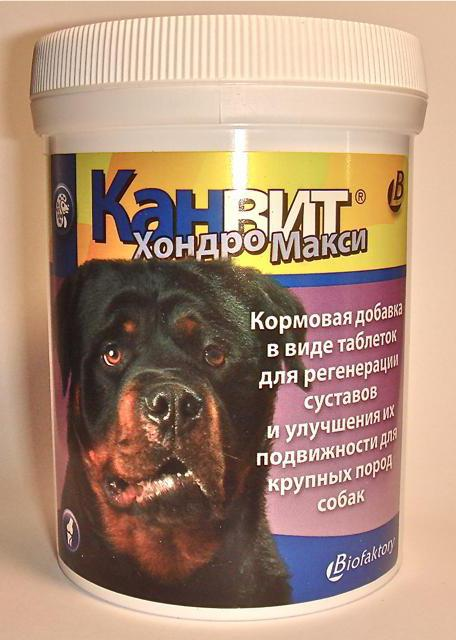 хондропротекторы для суставов для собак