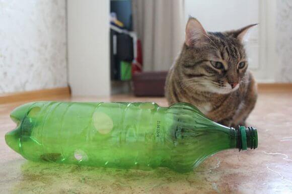 Игрушка из обычной бутылки
