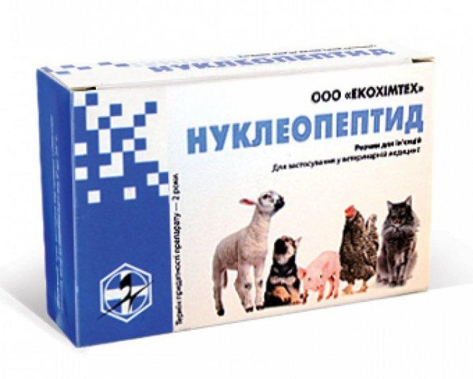 иммуномодуляторы для собак список