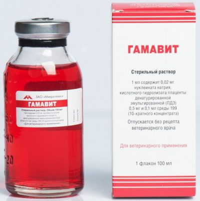 инъекции препаратами Гамавит для кожи собак