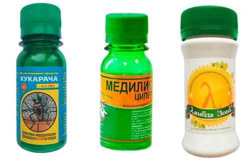 Инсектицидные средства профилактики появления паразитов
