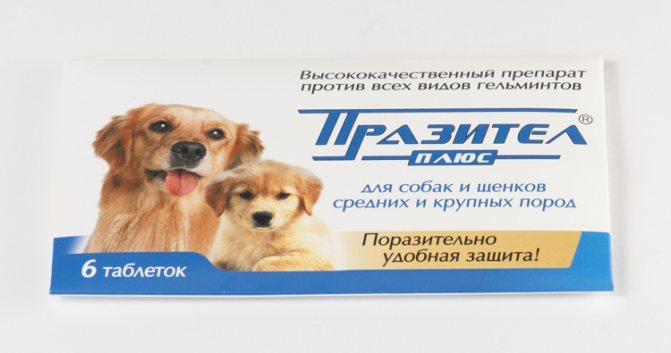 Инструкция к суспензии и таблеткам Паразител для собак