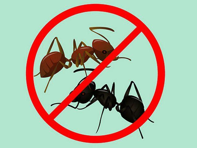 Инструкция по средству от муравьев Фас дубль