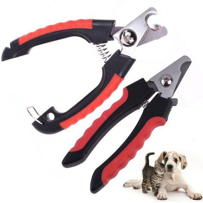 Инструмент для стрижки когтей у собак