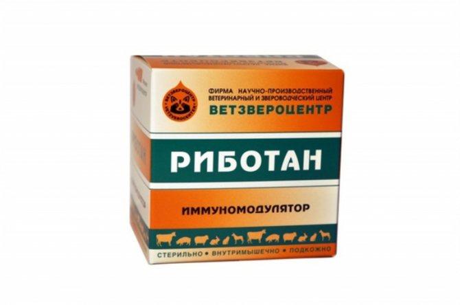 Как действует препарат Риботан