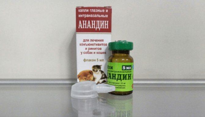 Как использовать анандин для кошек