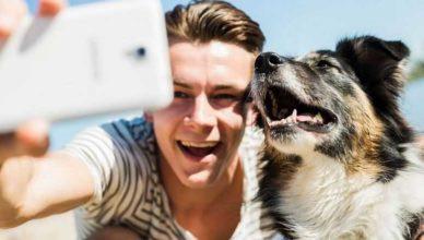 как правильно делать селфи с собакой