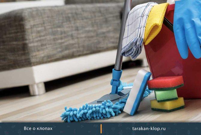 Как убирать квартиру после обработки от клопов