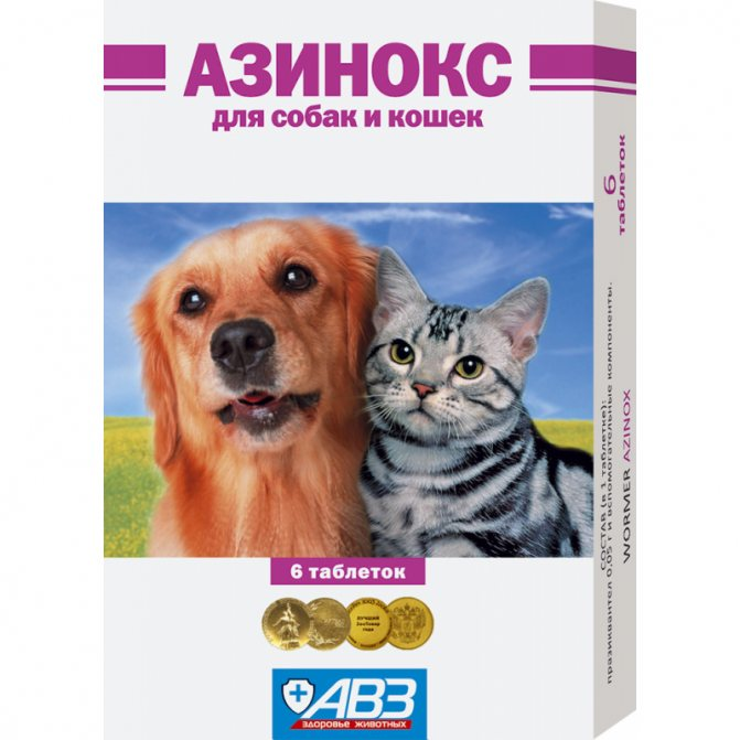 Как заставить кошку съесть таблетку от глистов