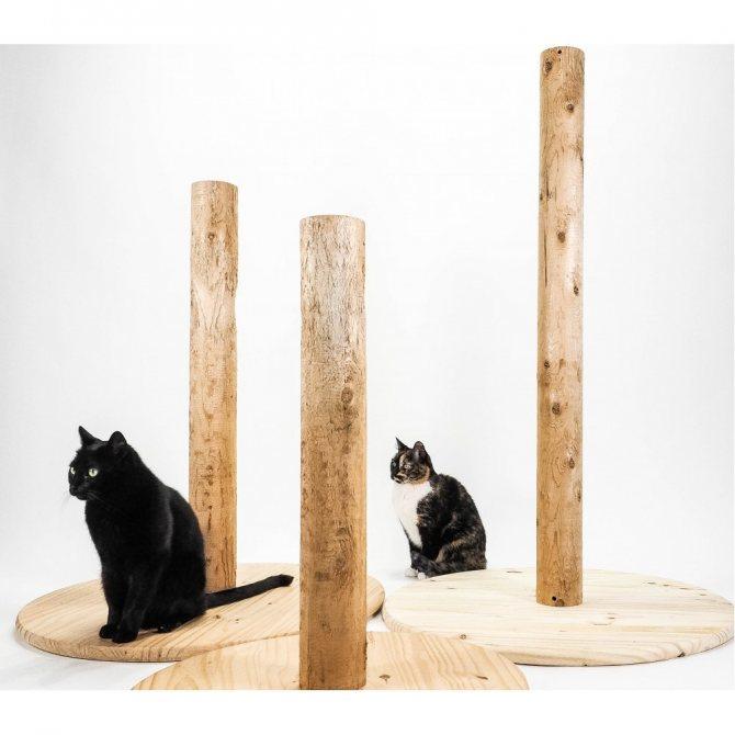 Какого размера и материала нужна когтеточка для кошки