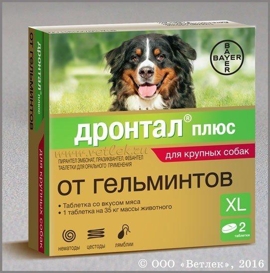 Каниквантел для собак инструкция по применению