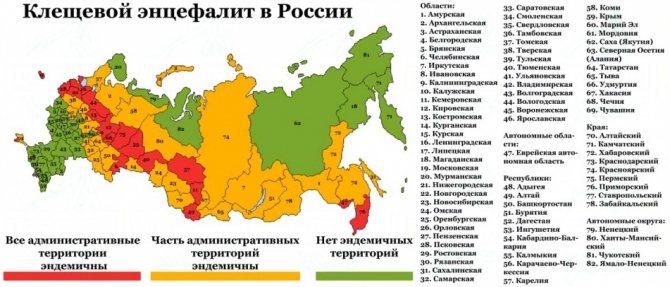 Клещевой энцефалит в России