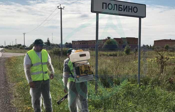 Клещи в Москве 2019 год не будет - проводятся акарицидные обработки